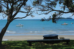 Martins Bay Holiday Park