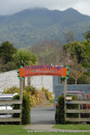 Pirongia Travellers Accommodation & Cafe