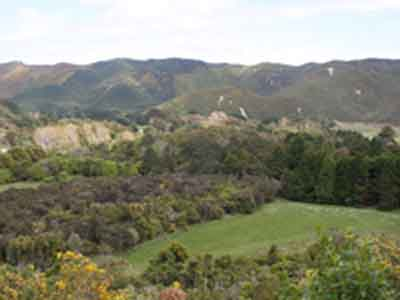 Rimutaka Forest Park – Catchpool Valley