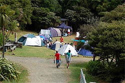 Great Barrier Island Campground