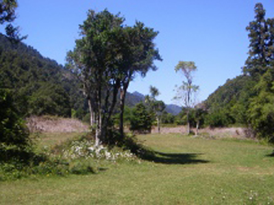 Okahu Road Campground